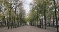 Den Haag - The Haia, Holanda (53) - Copy